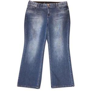 Lane Bryant Bootcut Jeans / short